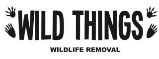 Wild Things Wildlife Removal Logo